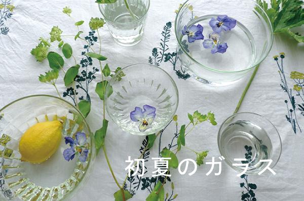 初夏のガラス